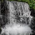 Photos: 七段の滝