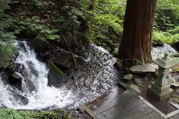 七段の滝 3