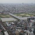 Photos: 市川から江戸川・小岩方面