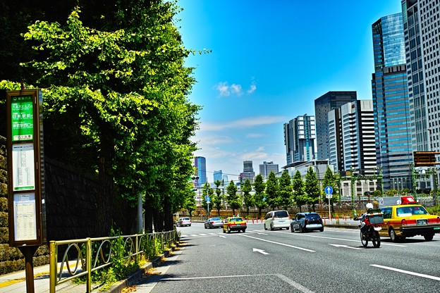 新緑の東京