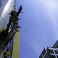 2012-04-18の空