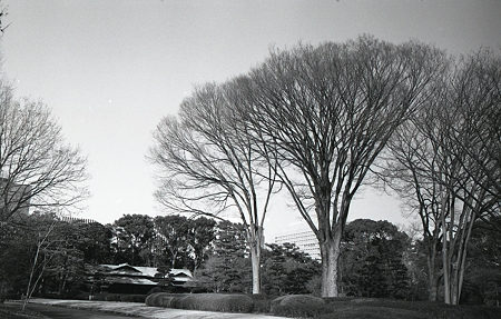 201202-03-004PZ