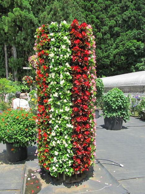0708屋外花タワー
