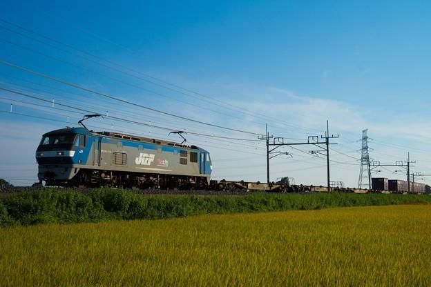 EF210-135牽引貨物@ワシクリ黒小屋踏切