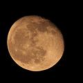 欠け往く月