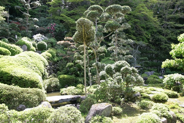 IMG_5468當麻寺・西南院・西南院庭園