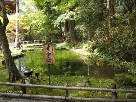 室生寺 梵字池 バンジ池 P9210030