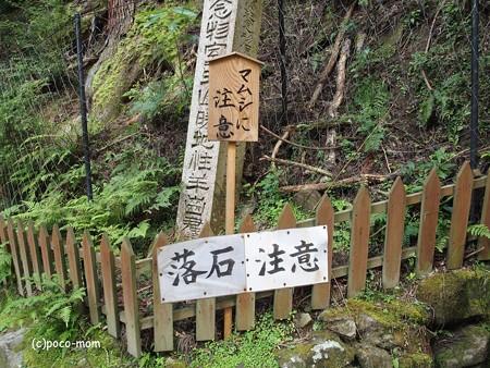 室生寺 マムシに注意 P9210098