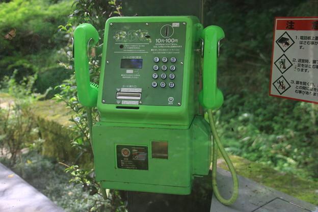うわさの公衆電話