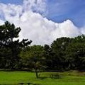 Photos: 2015晩夏05八景島・海の公園「雷雨注意報」