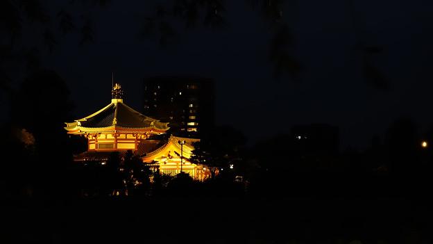 夜の弁天堂