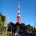 写真: 111225 TokyoTower