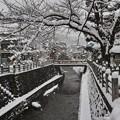 写真: 11.雪景色の江名子川