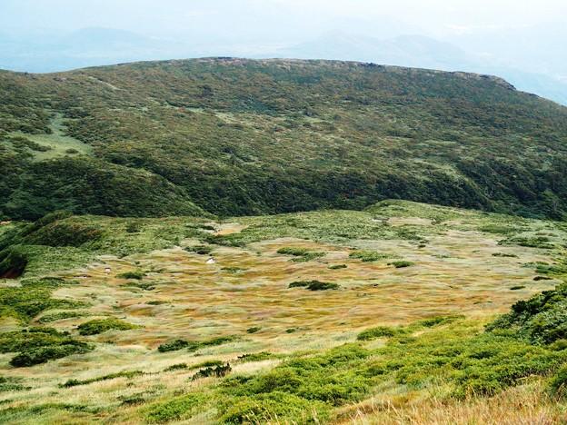 火山性の草原