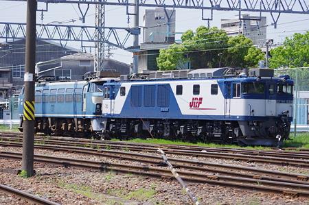 IMGP5855
