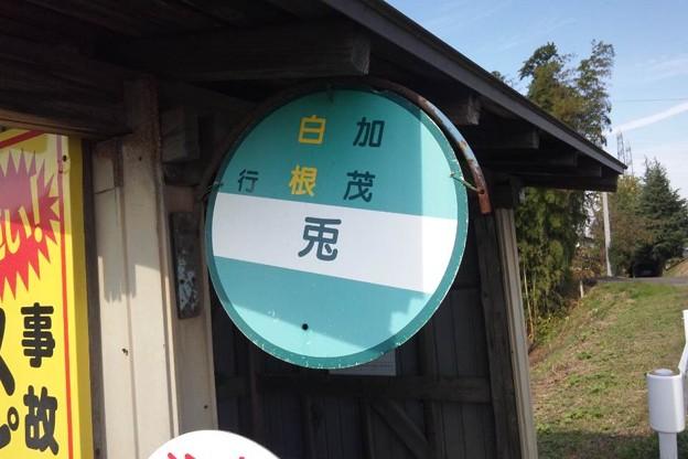写真: 兎バス停