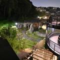 Photos: 夜の動物園