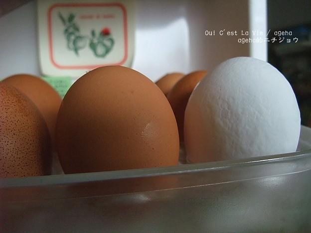 某コンビニの卵が胡散臭い。