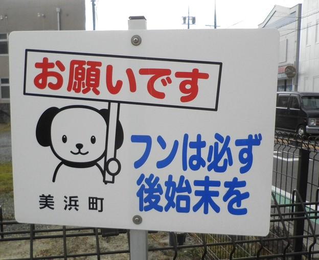 犬糞~愛知県美浜町