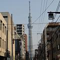 Photos: 下町NOW