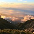 朝日に染まる雲海