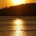 Photos: The Golden Sun