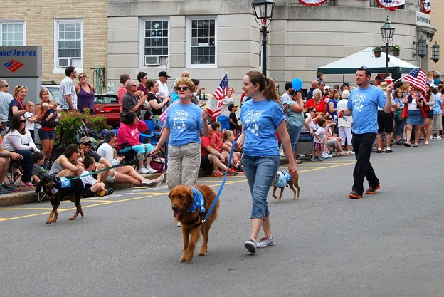 Parading Dogs 7-4-15