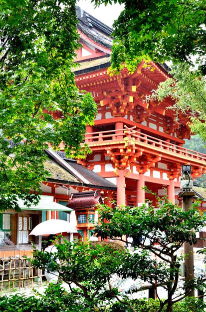 2015_0906_120013_上賀茂神社