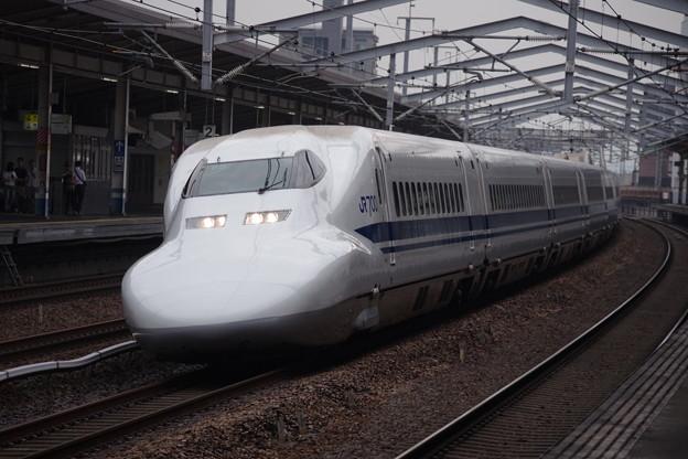 IMGP0226