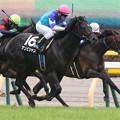 Photos: アンビシャス レース(15/05/09・プリンシパルステークス)
