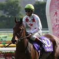 写真: ミッキークイーン  ウイニングラン_2(第76回 優駿牝馬)
