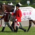 写真: ミッキークイン_2 (第76回 優駿牝馬)