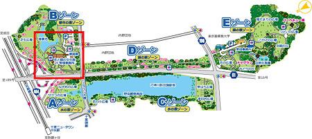 map2011c11