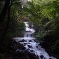 Photos: こもれびの滝の下流から