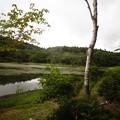 Photos: 小鳥ヶ池