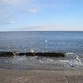 ひたちなか海岸 海その122 CIMG7843