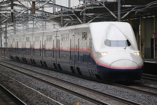 Photos: 上越新幹線E4系 P51編成(新塗装)