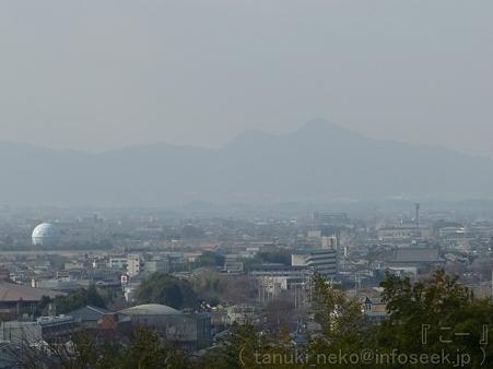 111229-三輪山 大神神社 (14)