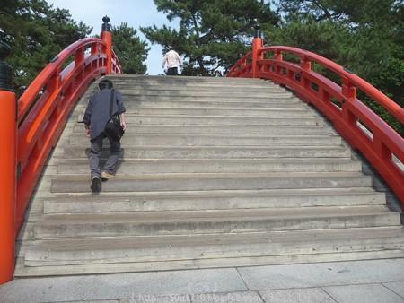 150615-住吉大社 (4)
