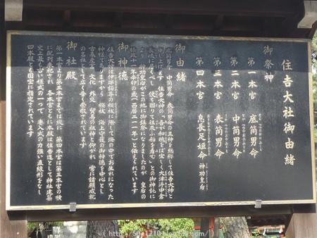 150615-住吉大社 (42)