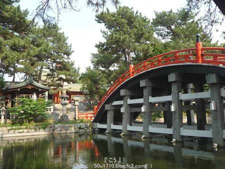 150615-住吉大社 (45)