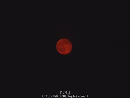 150801-お月さん (2)