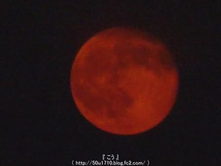 150801-お月さん (4)