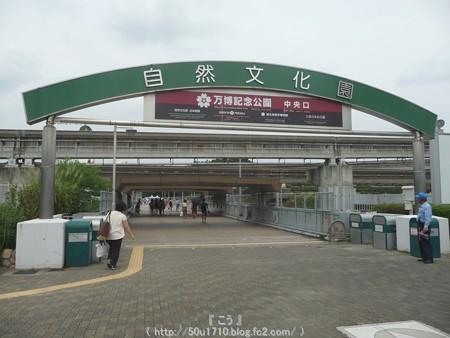 150829-万博公園 (17)