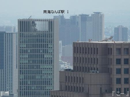110829-空中庭園 (40)改