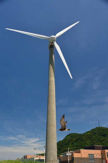 うみてらす名立の発電風車