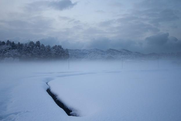 粉雪舞う雪原