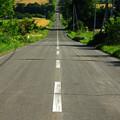 写真: ジェットコースターの路