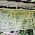 写真: 20110716_170344_raw