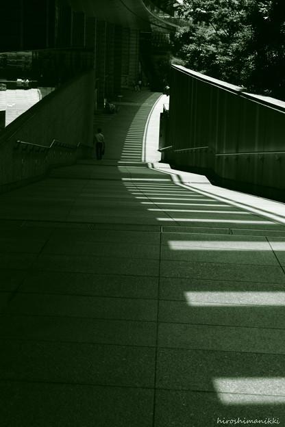光と影の回廊